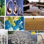 Số liệu về hiện trạng ô nhiễm môi trường ở Việt Nam