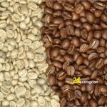 Hướng dẫn chọn nhà cung cấp dịch vụ rang xay cà phê uy tín
