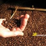Rang xay cà phê gia công giá rẻ